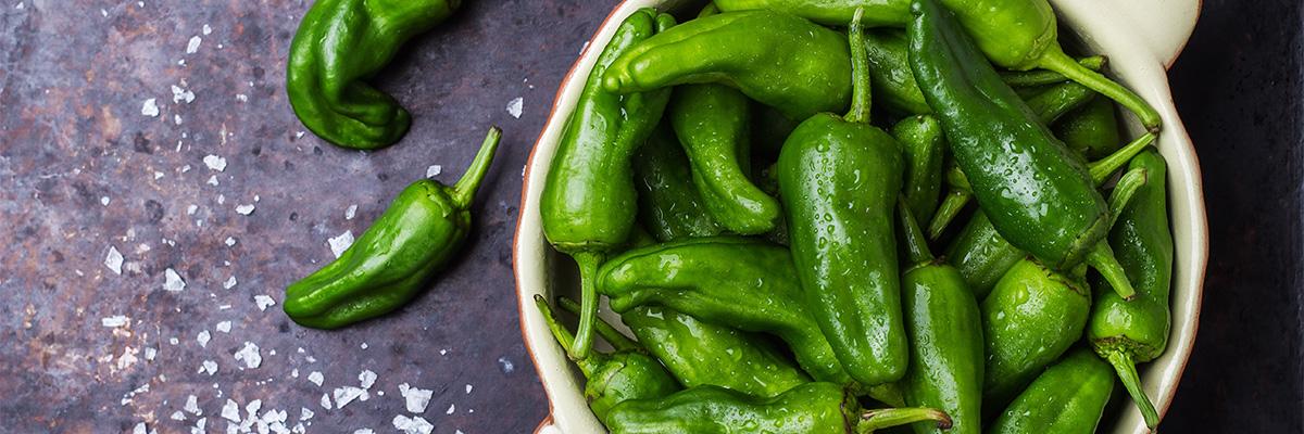 pikkupaprikat, vihreä paprika, pimientos de padrón